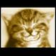 Tomas Bzatek's avatar