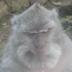 Bruce Mitchener's avatar