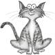 Nguyên Bình's avatar